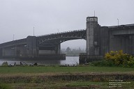 Chehalis River Bridge