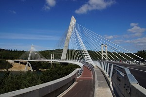 Cable-stayed bridges with curved deck