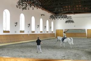 Manèges d'équitation