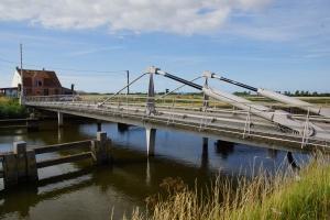 Piston-stayed bridges