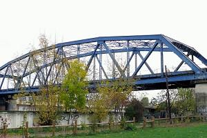 Polygonal Warren truss bridges