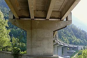 Quadruple T-section girder bridges