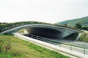 Grünbrücken