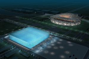 Sports venue complexes and installations