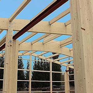 Holz bis zum <br>Fundament