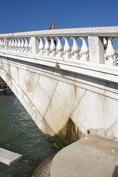 Scalzi Bridge