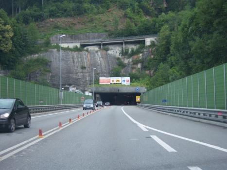 Tunnel du Pfänder