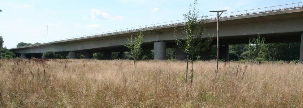 Mainflingen Bridge (A 45)