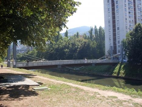 Ars Aevi Bridge