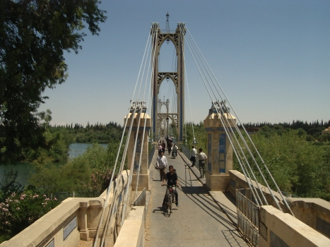Deir ez-Zur Suspension Bridge