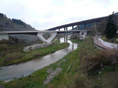 Llobregatbrücke Martorell