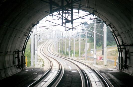 Tunnel de Göggelsbuch