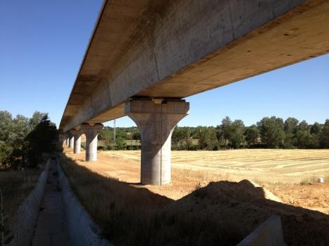 Viaduc de Guareña