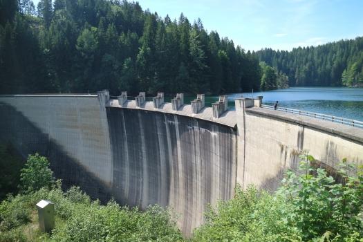 Hierzmann Dam
