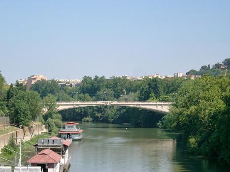 Ponte del Risorgimiento, Rome