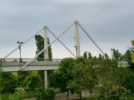 Pont de l'Avenue Pierre Dupuy, Montréal, Québec