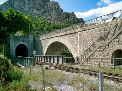 Ponts sur la Chalvagne, Entrevaux (04)