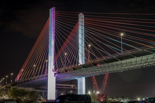 Kosciuszko-Brücke