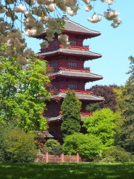 Japanischer Turm (Museen des Fernen Ostens)