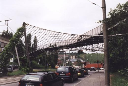 Löwentor Pedestrian Bridge and Net