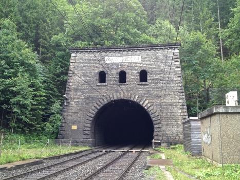 Tunnel du Lötschberg