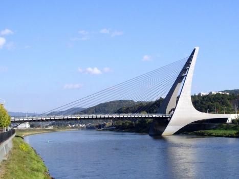 Mariansky Bridge