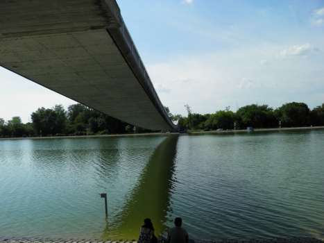 Geh- und Radwegbrücke Plowodiw