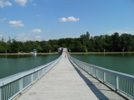 Passerelle de Plovdiv