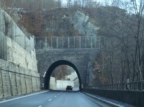 Nasenfelstunnel