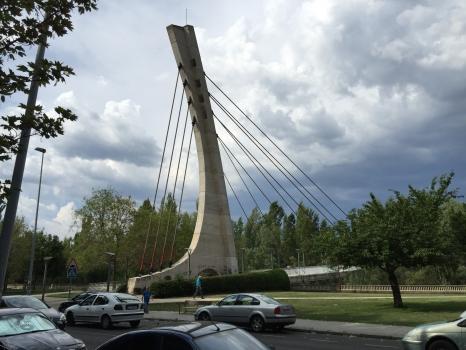 Geh- und Radwegbrücke über den Bernesga