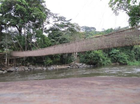Poubara Liana bridge