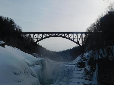 Genesee Arch Bridge