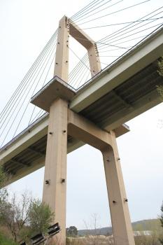 Puente de Fernando Reig