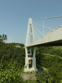 Pont de Qing Jiang