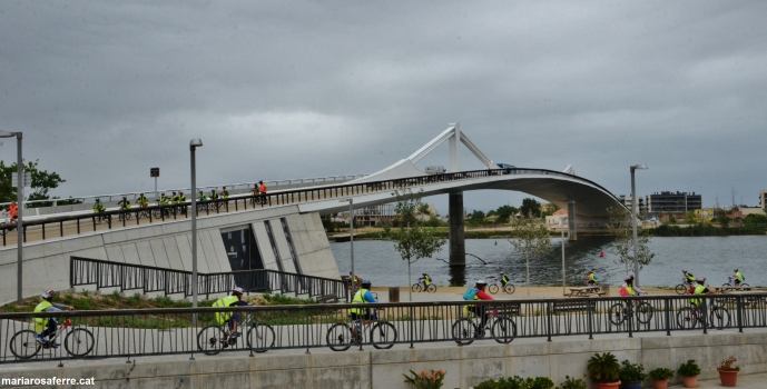 Deltebre Bridge