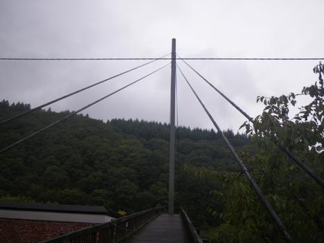 Saarhölzbach Footbridge
