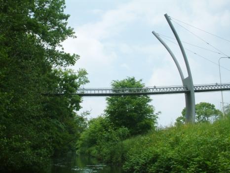 Squirrel Bridge