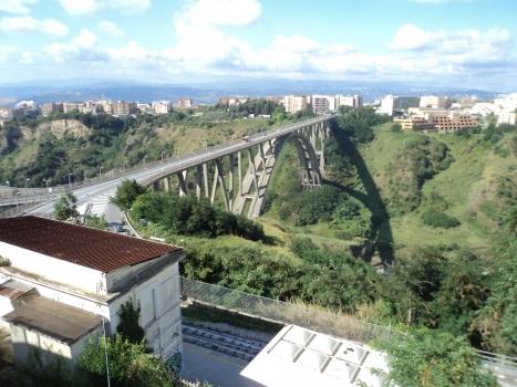 Fausto Bisantis Bridge