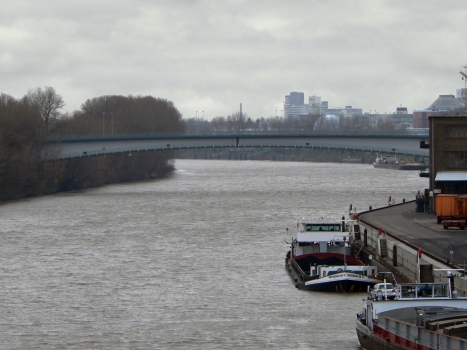 Werksbrücke Mitte (Höchst)