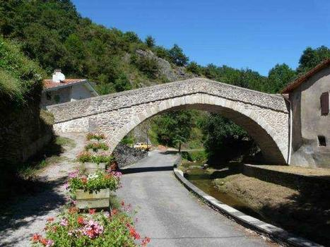 Pont du Chagnon - Loire - France Vue depuis l'amont