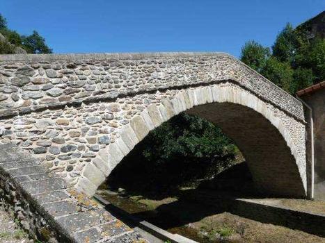 Pont du Chagnon - Loire - France Vue depuis l'amont rive gauche