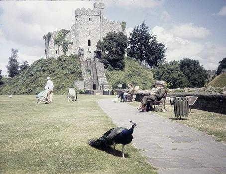 Burg Cardiff