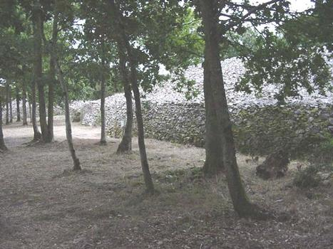 Camp de Bierre. Camp protohistorique, Merri, Orne