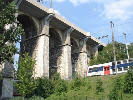 Ligne Paris-Invalides à Versailles-Rive-Gauche. Passage sous le viaduc de Meudon