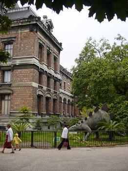 Muséum National d'Histoire Naturelle. Galerie de Paléontologie