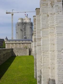 Château de Vincennes. Donjon, travaux en 2005
