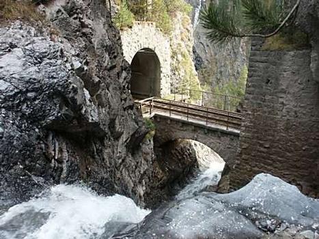Bärentrittbrücke, Wiesen