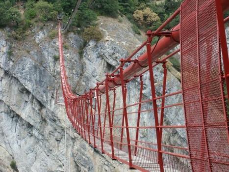 Pont suspendu de l'araignée, Niouc
