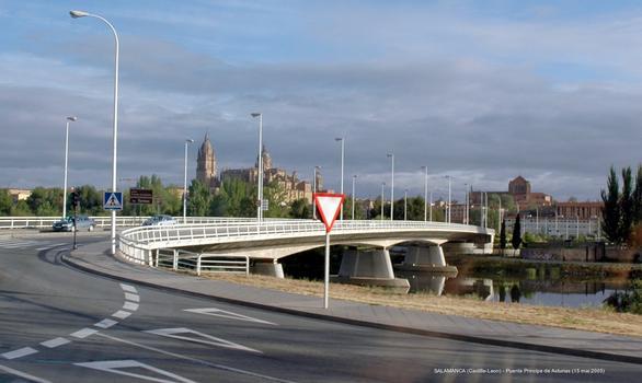 Principe de Asturias Bridge, Salamanca