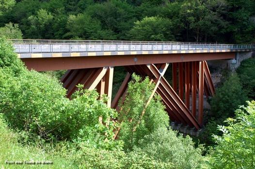 Merle Bridge